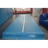 Quality 10m DWF Inflatable Gym Mat , Durable Outdoor Inflatable Air Track for sale