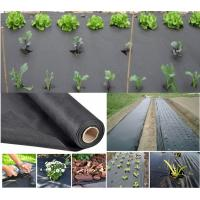 Wholesale Agriculture nonwoven fabric for weed control from china suppliers