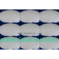 Quality Food Grade Powder Almost White Alpha Galactosidase Enzyme 4000u/g Szym-AGS4FO for sale
