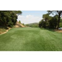 Wholesale 6300Dtex Field Green PE Golf Artificial Grass Lawns from china suppliers