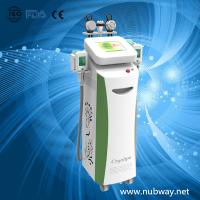 Wholesale 2014 Bestseller 5 Handles RF Cavitation Body Slimming Beauty Cryolipolysis Machine from china suppliers