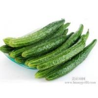 Wholesale Cucumber Extract Enhance immunity, delaying aging  Chinese Manufacturer Yongyuan Bio-Tech from china suppliers