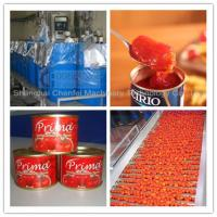 Wholesale Complete Tin Can Ketchup Tomato Paste Production Line 1 Year Warranty from china suppliers