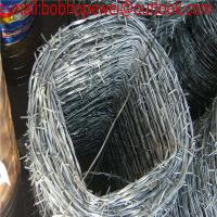 Wholesale 12# galvanized military barbed wire, barbed wire length per roll/barbed wire roll price fence/barbed wire factory price from china suppliers