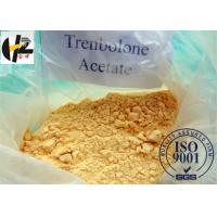 Wholesale Bodybuilding Male Enhancement Steroids Trenbolone Acetate CAS 10161-34-9 from china suppliers