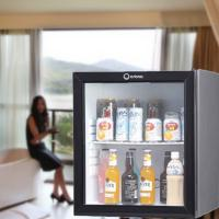 Quality 60L absorption glass door minibar for sale