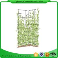 """Wholesale Two Panel Folding Screen Trellis , Garden Trellis Plant Support 35-1/2"""" W x 58"""" H overall  Powder-coated steel from china suppliers"""