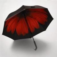 Wholesale Ladies Heat Transfer Printing OEM Design High Quality 2 Folded Umbrella from china suppliers