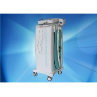 Wholesale Multifunction Vacuum Cryolipolysis Slimming Machine AC 220V For Clinic from china suppliers