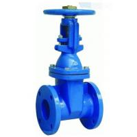 Wholesale PN16 Ductile Iron Flanged Gate Valve , DN 250 BS5163 Rising Stem Gate Valve from china suppliers