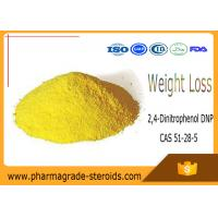 Wholesale CAS 51-28-5 Pharmaceutical Raw Materials 2,4-Dinitrophenol DNP for Weight Loss from china suppliers