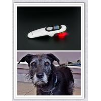 Buy cheap Pain free light laser therapy laser therapy for dogs low level laser or pet physcial therapy from wholesalers