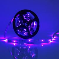 Wholesale 24w Purple 300leds 12v SMD 3528 LED Strip from china suppliers