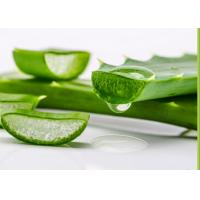 Wholesale Natural Plant Extracts Aloe Vera Extract / Aloe Barbadensis Miller For Minor Burns from china suppliers
