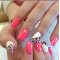Wholesale French Nail Tips with Leopard pattern , printing Leopard pattern Artificial nails from china suppliers