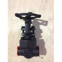 Wholesale Forged Steel Valves, ANSI Forged Steel Socket Welded/NPT Gate Valve 800LB from china suppliers