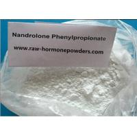 Wholesale 99.4% Cutting Cycles Steroid /Nandrolone phenylpropionate For Body Builders , White Powder from china suppliers