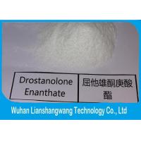 Wholesale High Purity Drostanolone Steroid / Drostanolone Enanthate Drolban Bodybuilding , Cas 13425-31-5 from china suppliers