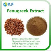 Buy cheap 100 Natural Top quality Natural Organic Fenugreek seed Extract from wholesalers