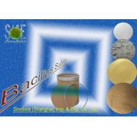 Wholesale Nutritional Bacillus Subtilis Probiotic Feed Additives for Poultry SEM-BS200BI from china suppliers