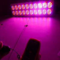 Wholesale 38% increase in production upon using led grow light from china suppliers