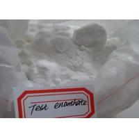 Wholesale High Purity Test Enanthate Testosterone Enanthate Powder CAS 315-37-7 from china suppliers