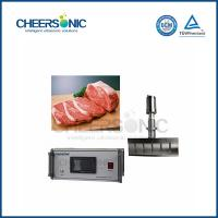 Wholesale UFC350 Ultrasonic Meat Cutter Machine , Meat Cutting Equipment Easy Operate from china suppliers