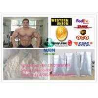 Wholesale Testosterone Steroid Injections Hormone Testosterone Acetate Test Acetate 1045-69-8  from china suppliers
