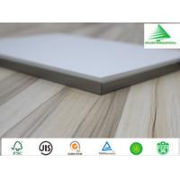 Quality 5-25mm New PET decorative panel with  high surface strength  importer for sale