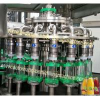 Wholesale Commercial Fruit Juice Packaging Machine , Wine Bottling Equipment / Bottling Line from china suppliers