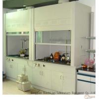 Wholesale Alkali Resistant Steel Fume Hood 800-1000mm Door Open Height For Laboratory Experiments from china suppliers
