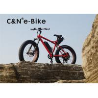 Wholesale Fat Tire Electric Sand Bike With Full Suspension , High Speed Womens Fat Tire Beach Cruiser from china suppliers