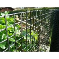 Wholesale Black HDPE Garden Fence for Protection Vegetable from china suppliers