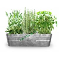 Wholesale Metal Tin Bucket Rectangular Flower Vegetables Plants Herbs Growing from china suppliers