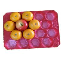 Wholesale Colorful Molded PE Fruit Packaging Trays For Protect Apple And Orange from china suppliers