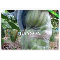 Wholesale White Color PP Nonwoven Fruit Protection Bag Covering Banana Cultivation Bags from china suppliers