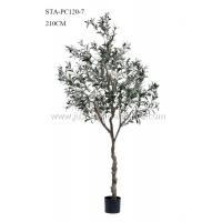 Wholesale Non Toxic Faux Potted Olive Tree , Faux Olive Tree In Pot Mediterranean Vibe from china suppliers