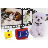 Wholesale Lovely Animals 720P Action Camera Video / Voice Reocorder for Dog or Cat Pet Camcorder from china suppliers