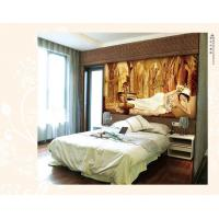 Wholesale Clear opacity, one way vision, transparent, translucent or mesh wall decoration painting from china suppliers