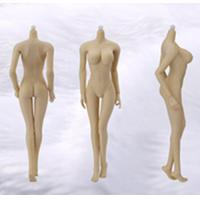 Wholesale 1:6 Scale figure for  Female body  with Big Breast Natural Skin from china suppliers