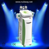 Wholesale Clinical RF Cavitation Vacuum Cryolipolysis Liposuction Machine For Body Shaping from china suppliers