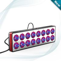 Wholesale 240*3W CE & Rohs approved apollo 16 led grow light for plants from china suppliers