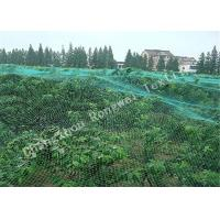 Wholesale Fruits / Plants Protection HDPE Knitting Anti-bird Net , Hexagon Mesh Bird Netting for Crops from china suppliers