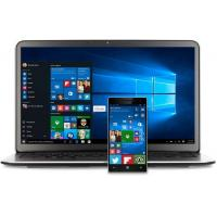 Wholesale Microsoft Windows 10 Professional Oem 64 Bit English / French / Arabic / Spanish from china suppliers