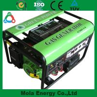 Wholesale Family Size Green Power biogas generator 5kw Electrical Power from china suppliers