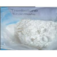 Wholesale Healthy Safe Trenbolone Enanthate Anabolic Steroid Hormone Tren Enan 472-61-546 from china suppliers