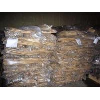 Wholesale 2012 New Crop Fresh Burdock from china suppliers