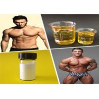 Wholesale Injectable Anabolic Steroids Best Solution Manufacturer Test Blend 500mg Semi Finished from china suppliers