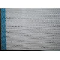 Quality Blue 100% Polyester Dryer Screen Spiral Fabric For Drying Large Loop for sale