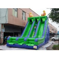 Wholesale Green Color Double Lane Inflatable Slide Toys For Outdoor Fire Retardant from china suppliers